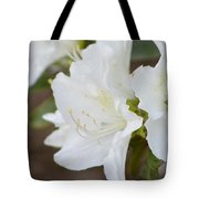 Pretty In White Azalea  Tote Bag