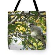 Pretty Little Bird Tote Bag