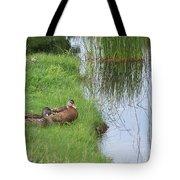 Mated Pair Of Ducks Tote Bag