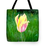 Pretty Pastel Tulip Tote Bag