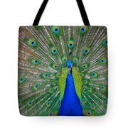 Pretty Peacock Tote Bag