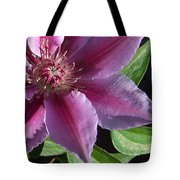 Pretty Pink Clematis Tote Bag