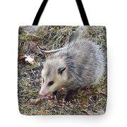 Pretty Possum Tote Bag