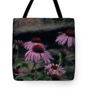 Pretty Purple Ladies Tote Bag