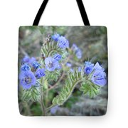 Pretty To Look At Tote Bag