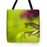 Preying Mantis Tote Bag