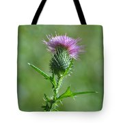 Prickle-me-not Tote Bag