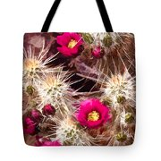 Prickley Cactus Plants Tote Bag