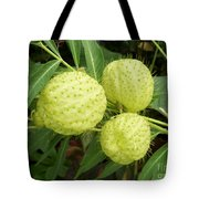 Prickly Balloon Plant Tote Bag