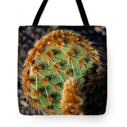 Prickly Cactus Leaf Green Brown Plant Fine Art Photography Print  Tote Bag