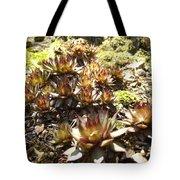 Prickly Lilies Tote Bag