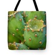 Prickly Pear Cactus 2am-105306 Tote Bag