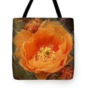 Prickly Pear Cactus Blooming In The Sandia Foothills Tote Bag