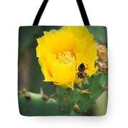 Cedar Park Texas Prickly Pear Cactus In Flower Tote Bag