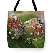 Prickly Pear With Cochineal Bugs Tote Bag