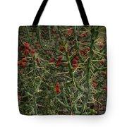 Prickly Pete Cactus Tote Bag