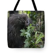 Prickly Pete Tote Bag