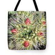Prickly Pleasure Tote Bag