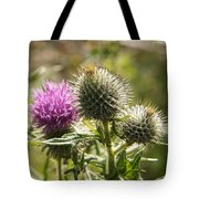 Prickly Youth Tote Bag