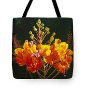 Pride Of Barbados Tote Bag
