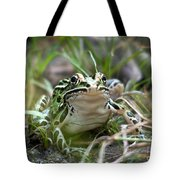 Prince For A Kiss Tote Bag