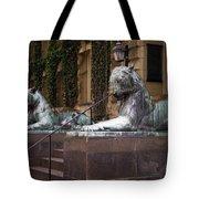 Princeton Tigers Tote Bag