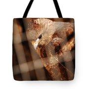 Prisoner Hawk  Tote Bag