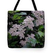 Privet Blossoms 2 Tote Bag