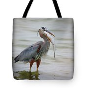 Prize Catch Tote Bag