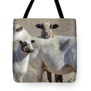 Professional Sheep Tote Bag