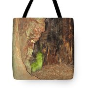 Profile Face In Tree Tote Bag