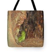 Profile Face In Tree Tote Bag