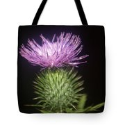Profile Of Pruple Thistle Tote Bag