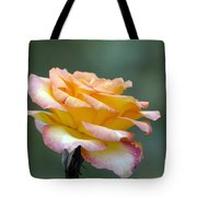 Profile View Yellow And Pink Rose Tote Bag