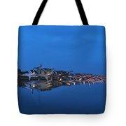 Promenade In Blue  Tote Bag