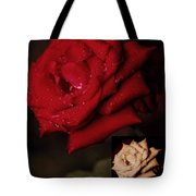 Promise Of Tomorrow Tote Bag