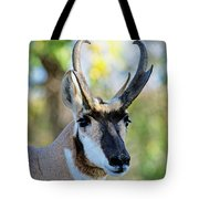 Pronghorn Antelope Portrait Tote Bag