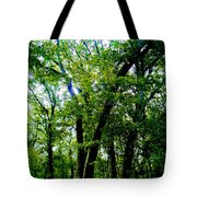 Proportion From The Series The Elements And Principles Of Art Tote Bag