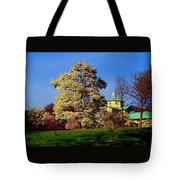 Prospect Park In Brooklyn II Tote Bag