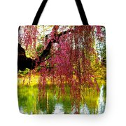 Prospect Park In Brooklyn Tote Bag