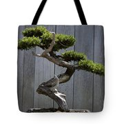 Prostrate Juniper Bonsai Tree Tote Bag