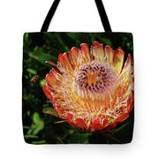 Protea Flower 2 Tote Bag