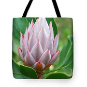 Protea Flower Blossoming Tote Bag