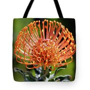 Protea - One Of The Oldest Flowers On Earth Tote Bag