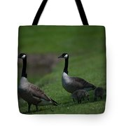 Protect Their Babies Tote Bag