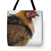 Protected Poultry In Key West Key West Tote Bag