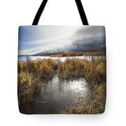 Protected Wetlands Tote Bag