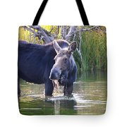 Protective Mother Tote Bag