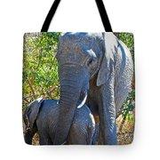 Protective Mother Elephant In Kruger National Park-south Africa Tote Bag