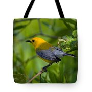 Prothonotary Warble Dsb071 Tote Bag